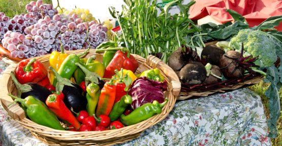 Baische Ernährung – Entschlackungskur