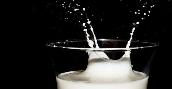 Wo sind Milchproteine enthalten?